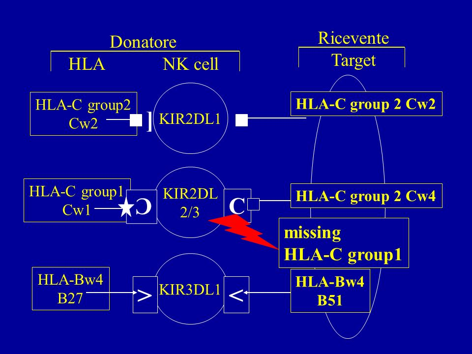 > < [ ] C C Ricevente Donatore Target HLA NK cell missing